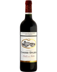 Château Chasse-Spleen 2010 Rouge