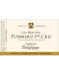 1er Cru Les Bertins 2009 Domaine Delagrange Rouge