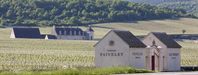 Domaine Faiveley - Nuits-Saint-Georges chez Cavissima.com