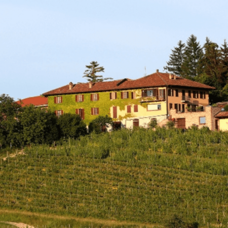 Les vignes et la façade du domaine