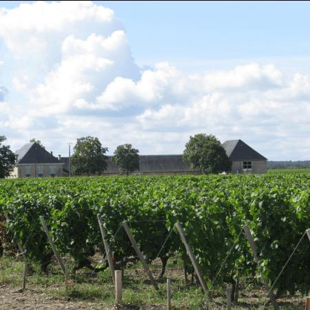 Vignoble du Château