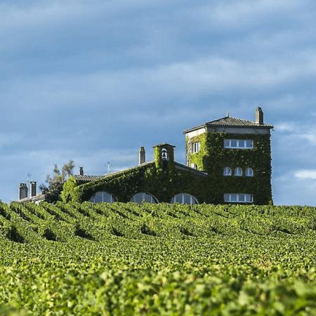 Le vignoble du Château