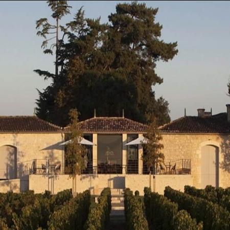 Château Ferrand Vignes