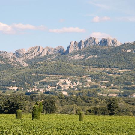 Dentelles de Montmirail, vignoble du Château de Saint Cosme