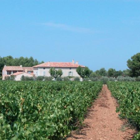 Le vignoble d'Eole en appellation Côteaux d'Aix-en-Provence