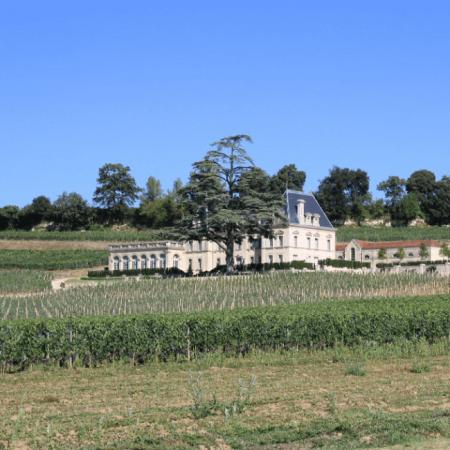 Vue du Château Fonplégade