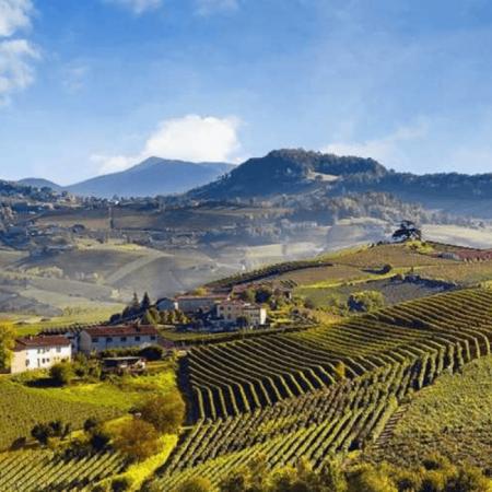 Le vignoble de Barolo