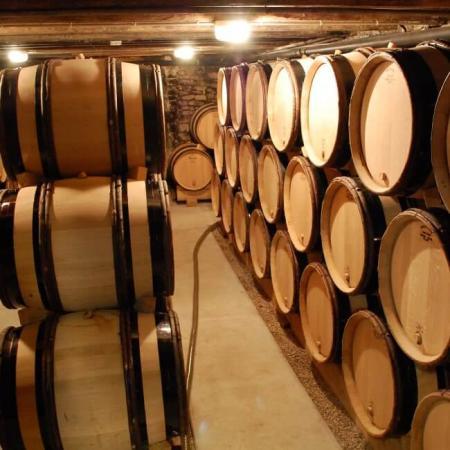 Elevage précis des vins en cave