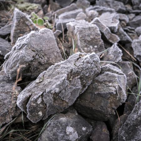 La roche de Spilite présente sur le Clos des Treilles