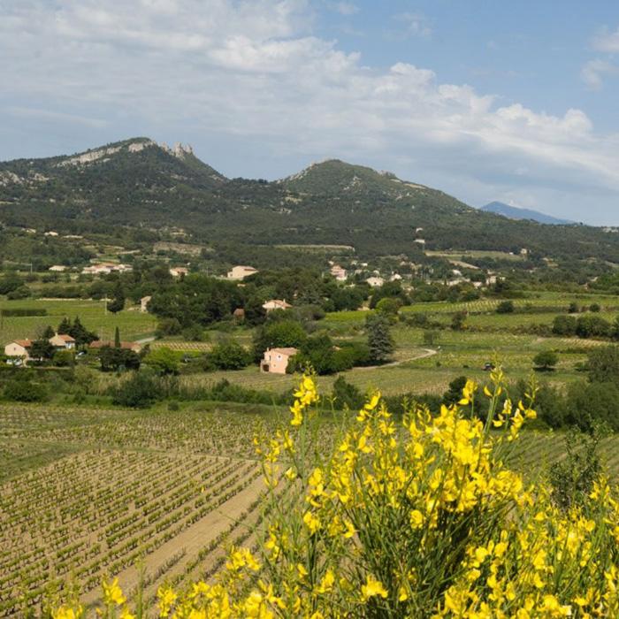 Le domaine provençal