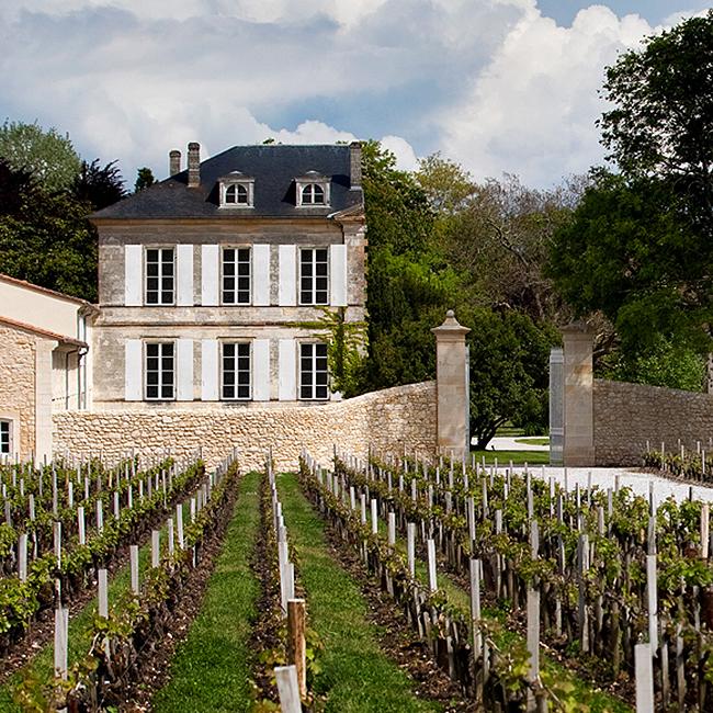 Château d'Armailhac vignes