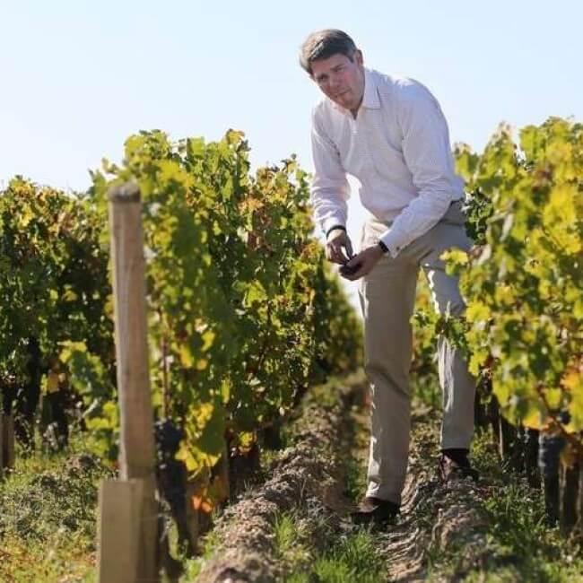 Laurent Fortin dans les vignes du domaine