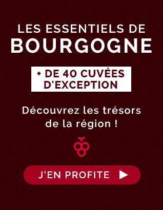 Les Essentiels de Bourgogne : découvrez les trésors de la région !