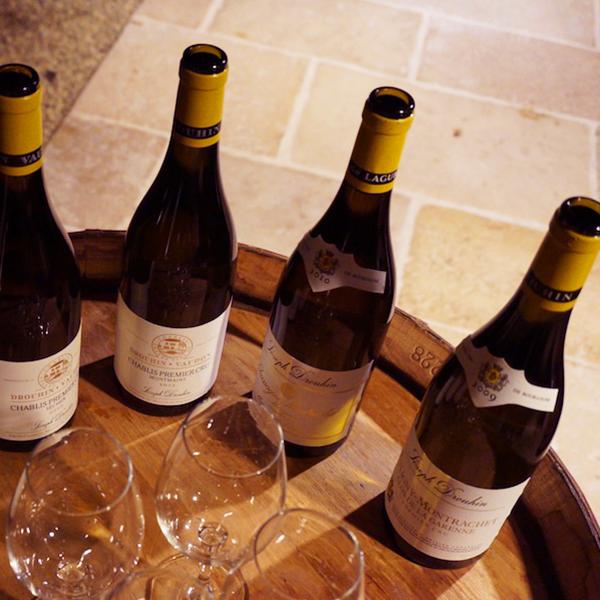 Dégustation des vins du domaine Drouhin Vaudon