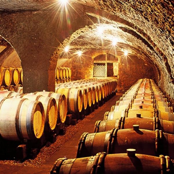 Cave Antonin Guyon