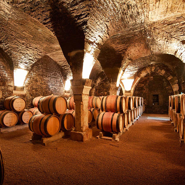 Cave de la Maison Joseph Drouhin