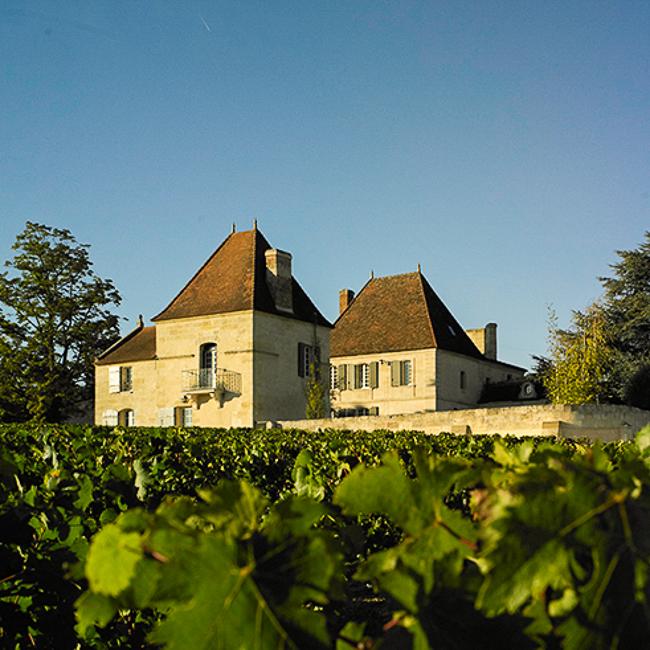 partie du chateau dans les vignes