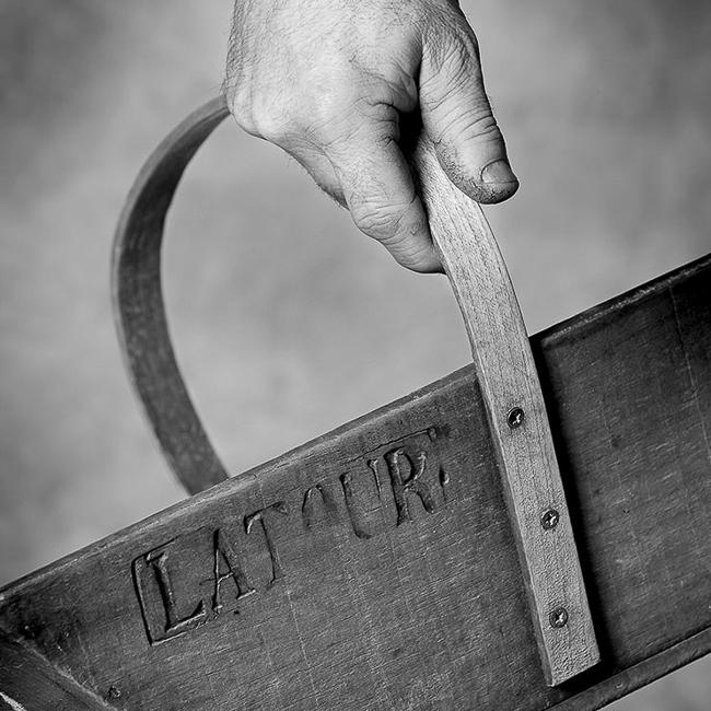 main de vigneron portant une cagette de vendange sur laquelle est gravé Latour