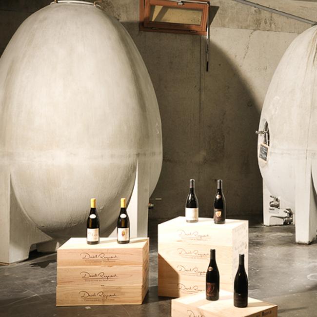 caisses bois, bouteilles et cuves ovoïdes en béton dans la cave de David Reynaud