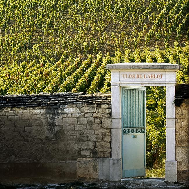 bout du vignoble et vieille entrée inscrite clos de l'Arlot