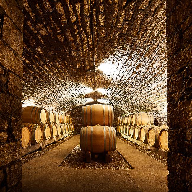Cuvier souterrain, murs de pierre et tonneaux au centre