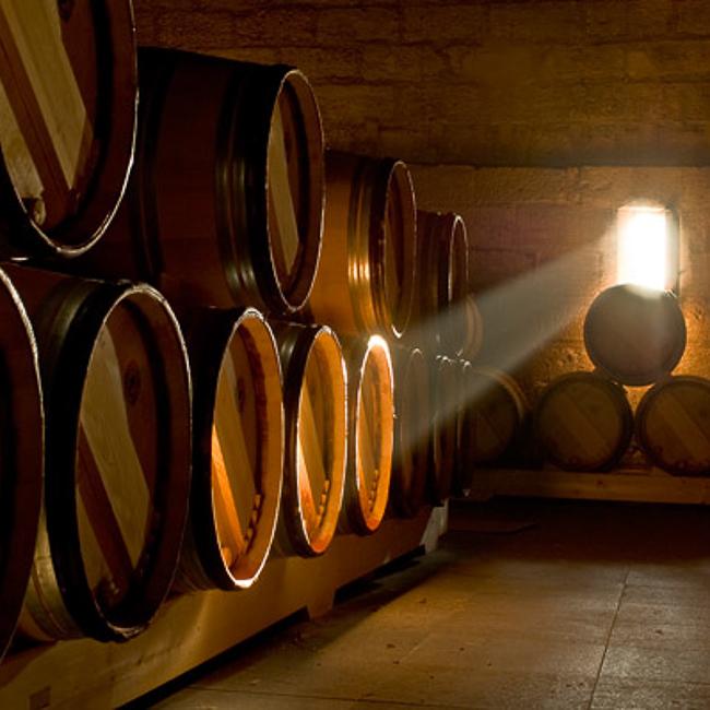 chai du château avec tonneaux éclairés par un rayon de lumière